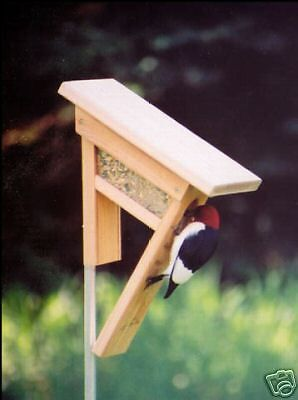 Clinger Woodpecker Bird Feeder & Squirrel Proof Pole