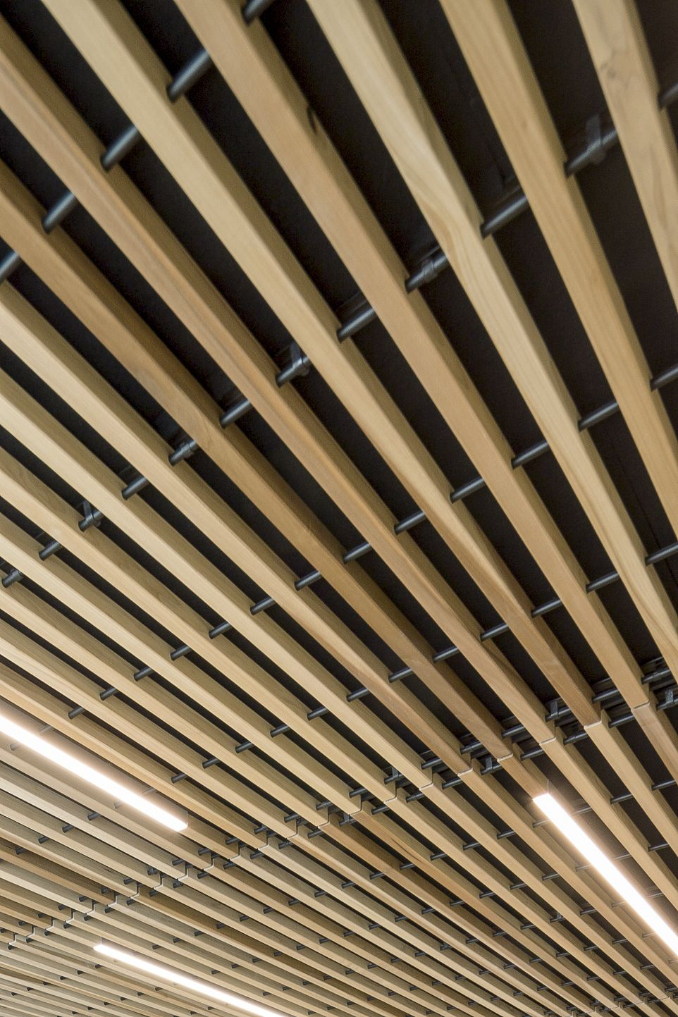 Wood Ceiling Close Up Architecture Project Koninklijke Golfclub