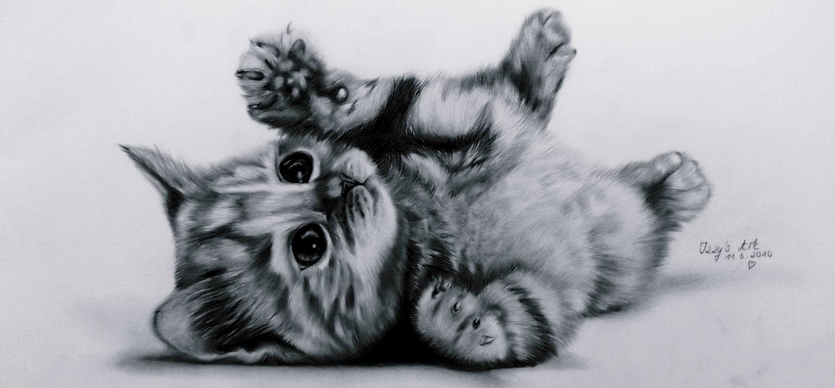 Maxresdefault Jpg 2655 1234 Kitten Drawing Images Of Cute Cats Cat Drawing