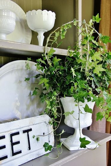 DIY ~ Make a topiary using hangers!