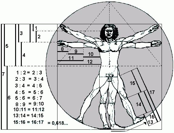 Resultados De La Búsqueda De Imágenes De Google De Http Www Iesfuentenueva Net Proyecto Images Stories Matematic Sezione Aurea Figure Umane Leonardo Da Vinci