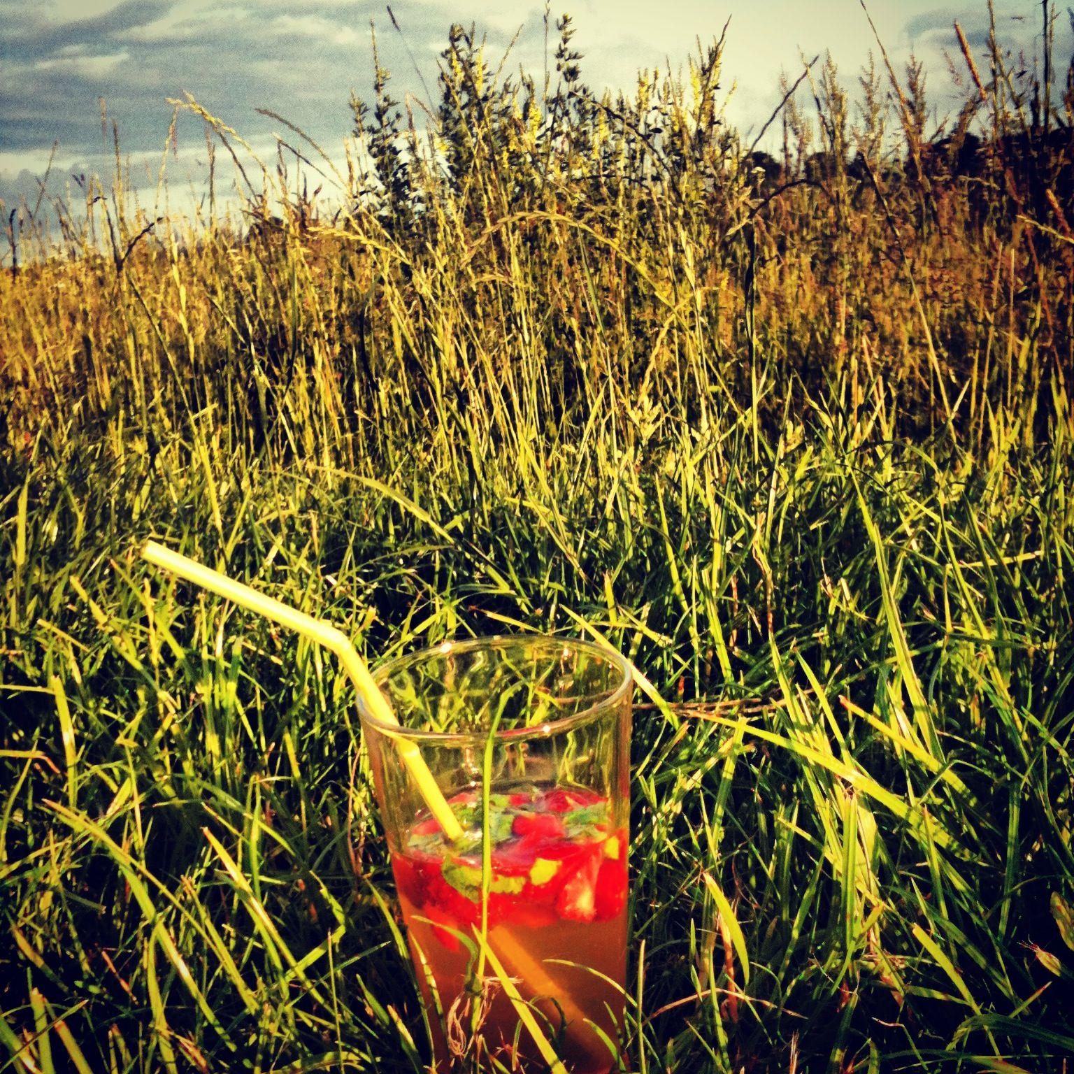 Blumenwiese trifft Erdbeer-Basilikum-Bowle | Sommerabend-Drink