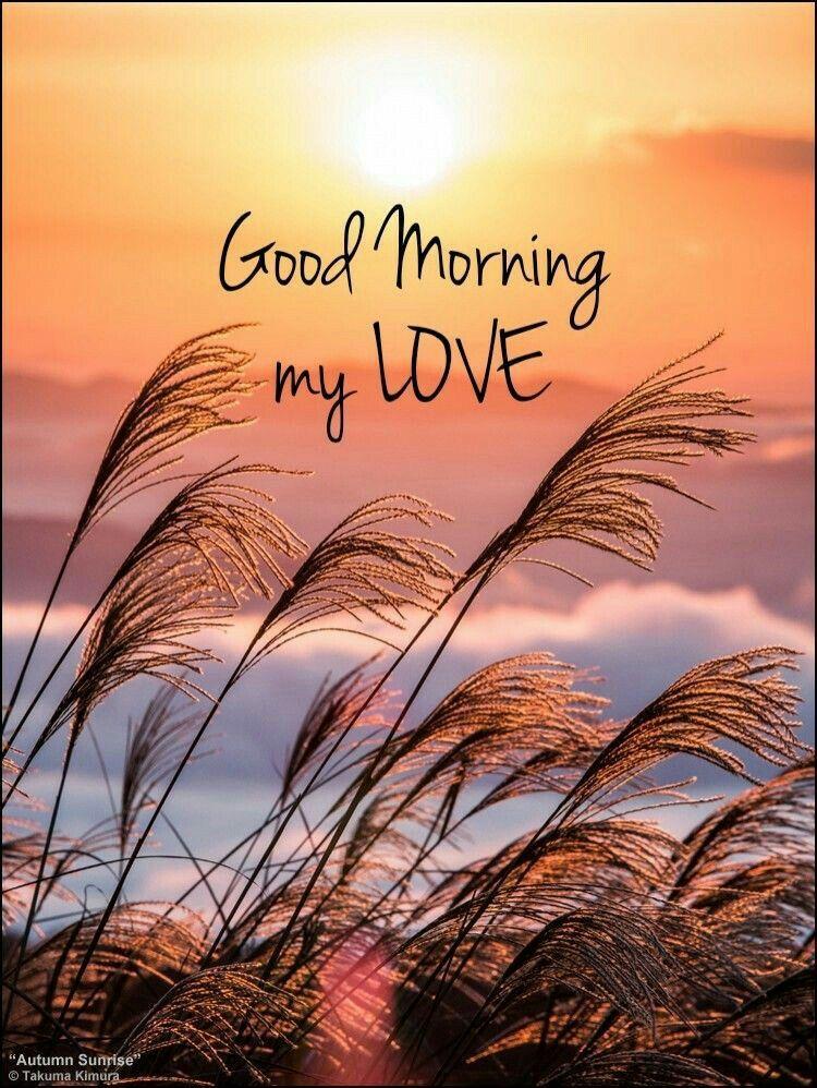 Good Morning Happy Sunday Good Morning Love Morning Love Quotes Morning Quotes For Him