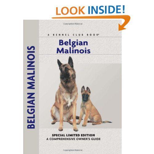 Animal Planet Belgian Malinois Google Search Belgian Malinois Malinois Belgium Malinois