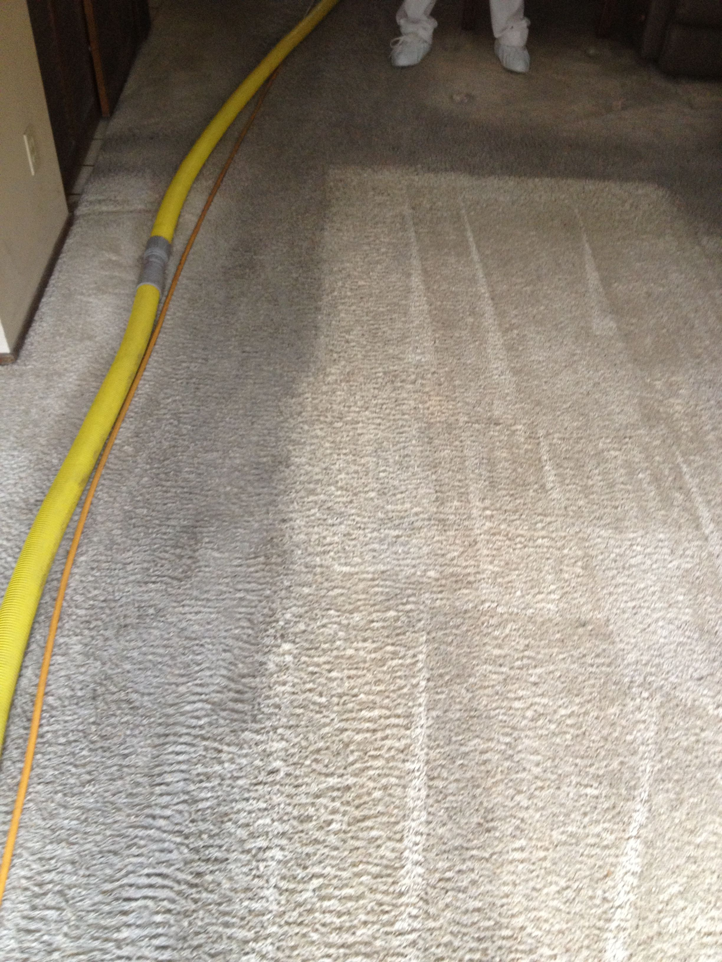 Before after carpet cleaning before after pinterest carpet cleaning before and after picture baanklon Choice Image