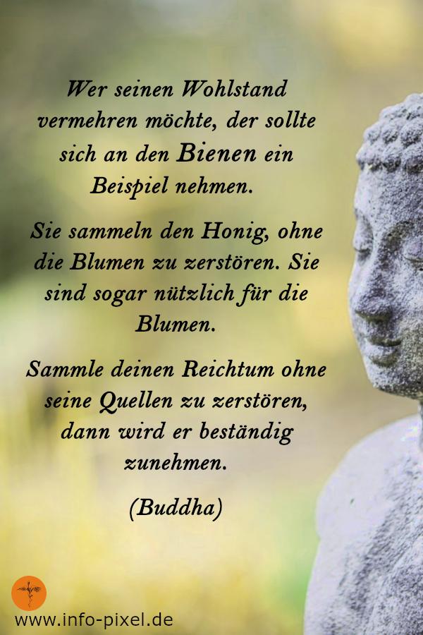 Lebensweisheiten Buddha Für Mehr Lebensglück Und Freude