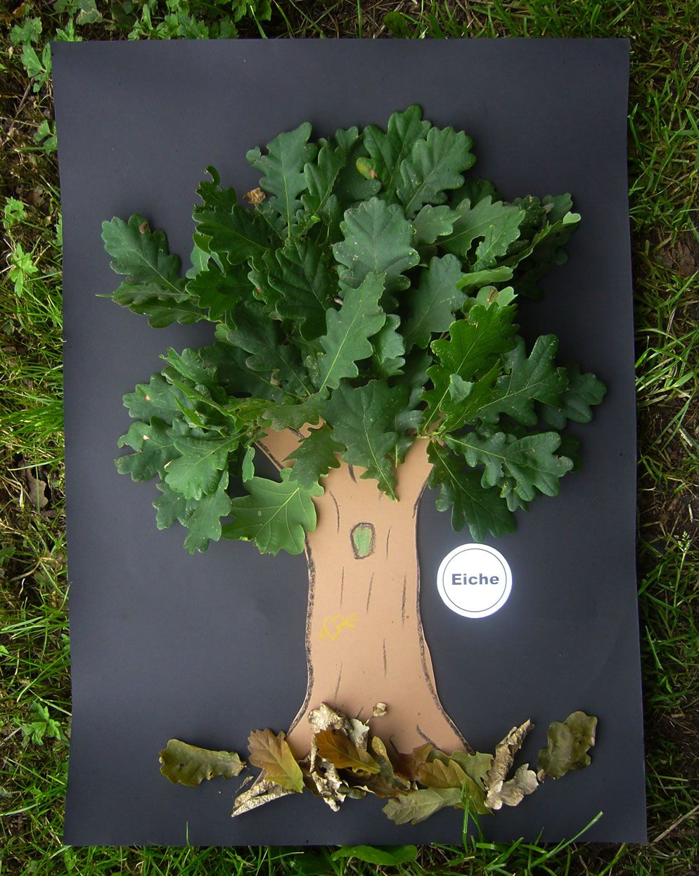 Unser baum kreativ im herbst basteln herbst for Projekte im kindergarten herbst