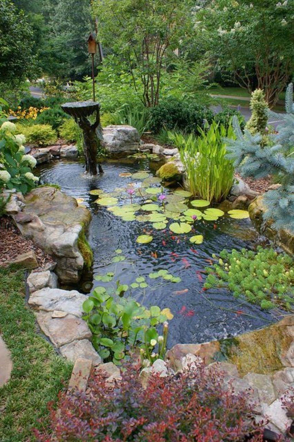 Cool Fish Pond Garden Landscaping Ideas For Backyard 01 Small Water Gardens Small Garden Landscape Garden Pond Design