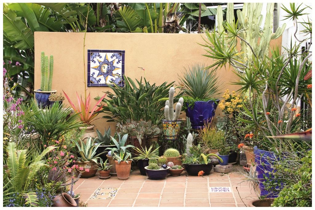 Superbe Collection In Patio Pot Plants Ideas Good Potted Plant Ideas Home  Decorations Ideas