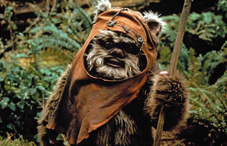 Funny Ewok Wars Pictures Google Search Star Wars Personajes Episodios De Star Wars