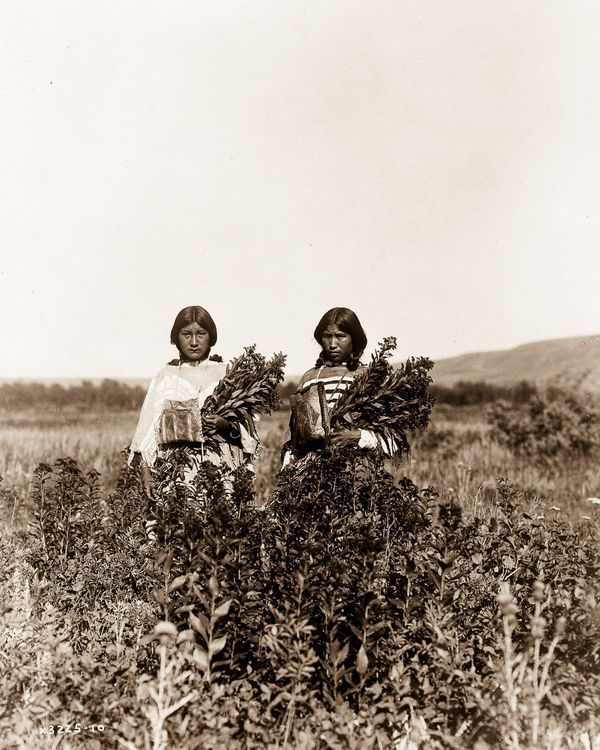 The North American Indian, 1904-1924 (28 Photos) - Old Photo Archive