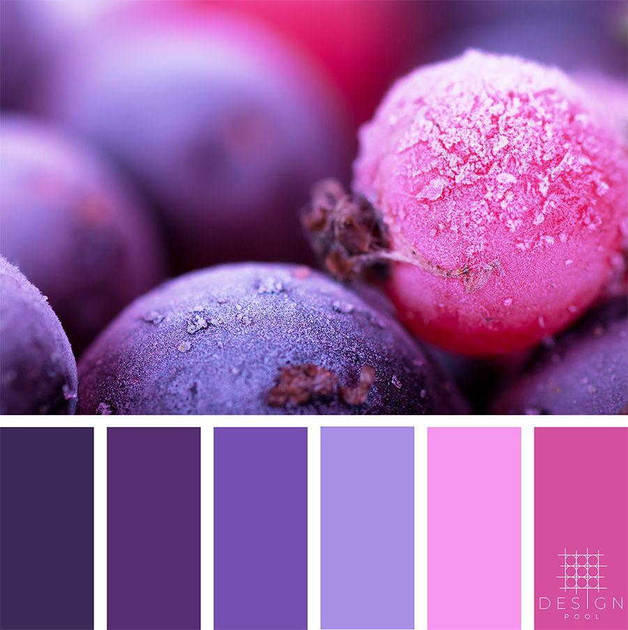 Frozen Berry Color Palette images