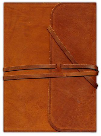 ESV Single-column Journaling Bible, Large Print, Brown