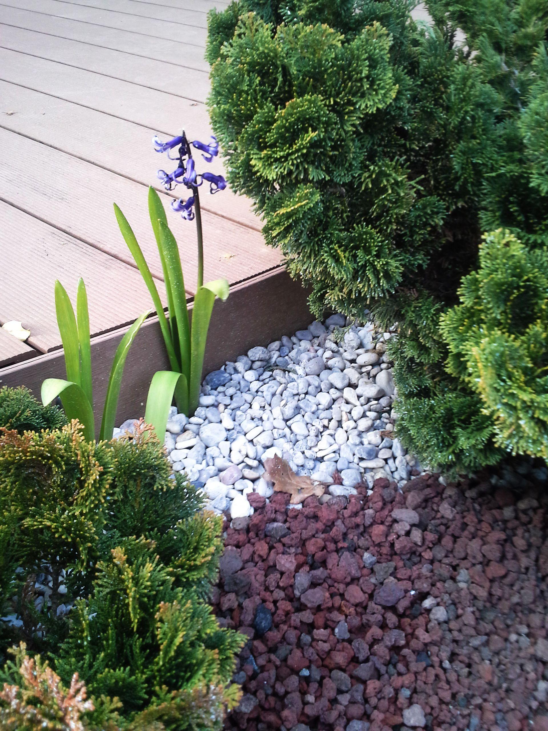 paillage cailloux blanc et pouzzolane rouge | jardin sans entretien ...