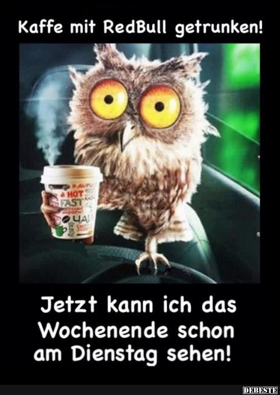 Kaffee mit RedBull getrunken!   Lustige Bilder, Sprüche