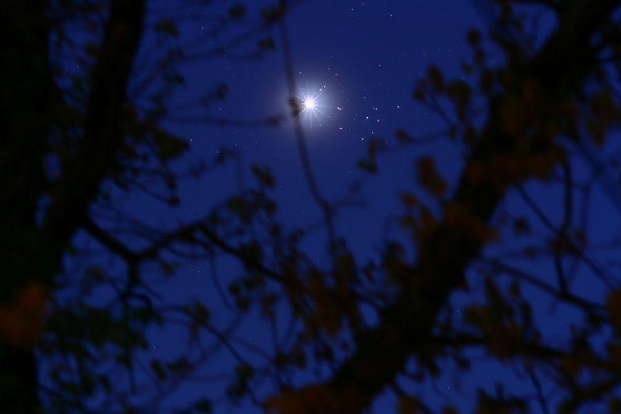 Venus y las Pléyades.