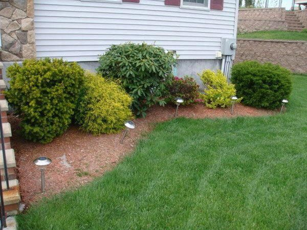 Backyard ideas, the basic to amazing outline reference ...