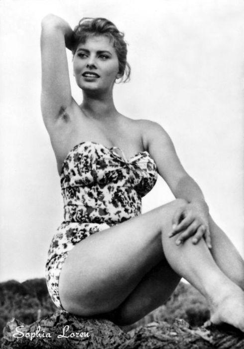Ladies With Hairy Ampits Sophia Loren Actrices Rostro Femenino