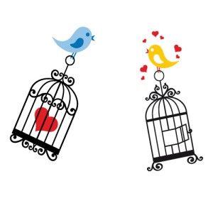 faça você mesmo meu amor diy casamento birds bird cage e love birds