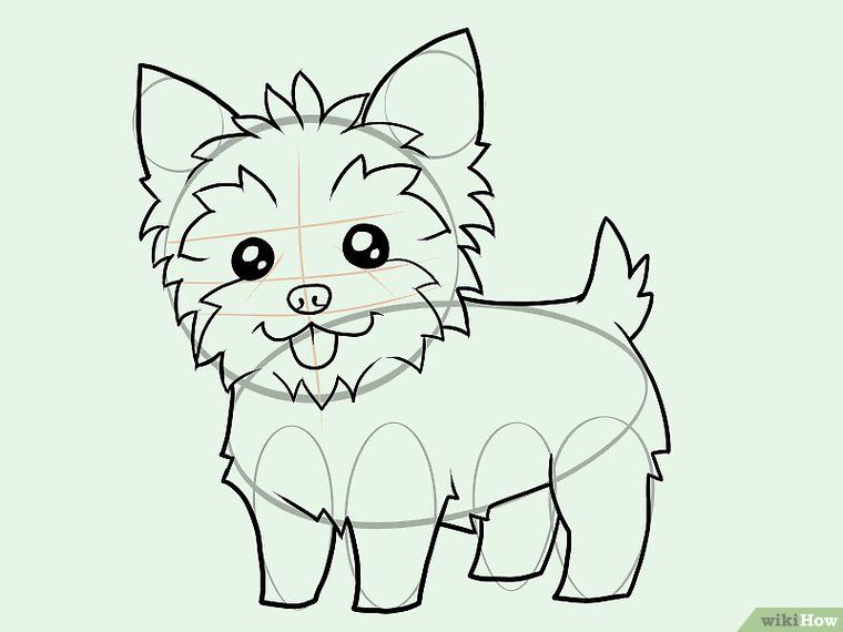 Draw A Yorkie Crafts Animal Drawings Easy Drawings Cartoon