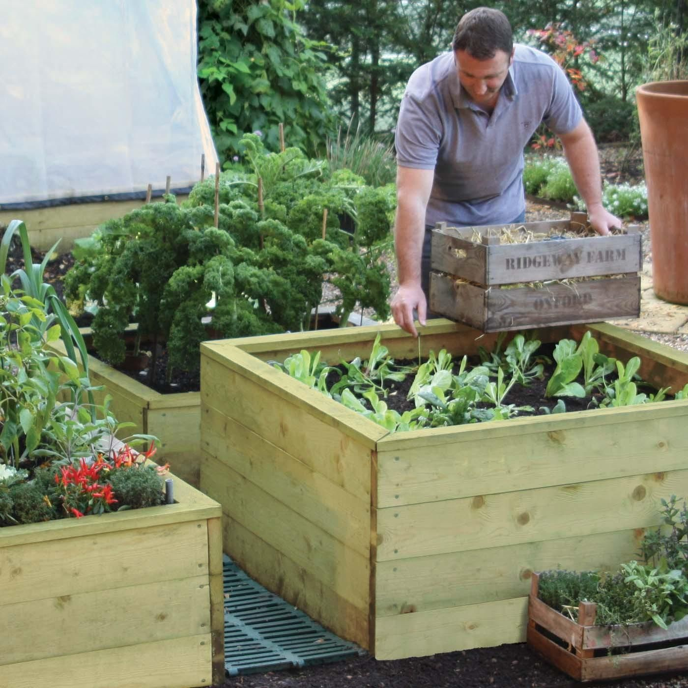 Standard Wooden Raised Beds Raised beds, Raised bed kits