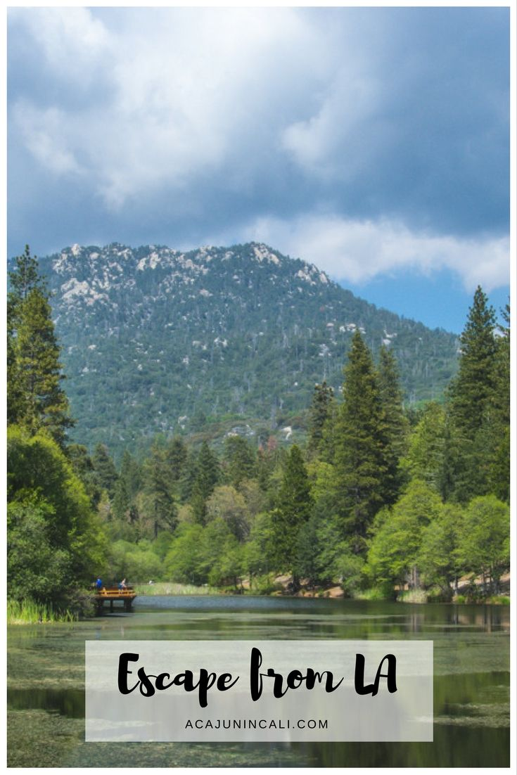 visiting idyllwild is the perfect way to escape la! | a cajun in