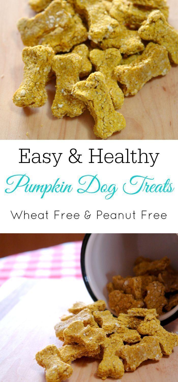 Homemade Pumpkin Dog Treats | Dog biscuit recipes, Dog ...