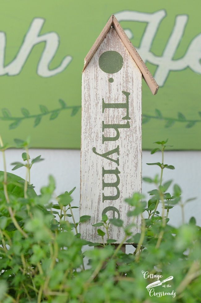herb plant markers from Walmart