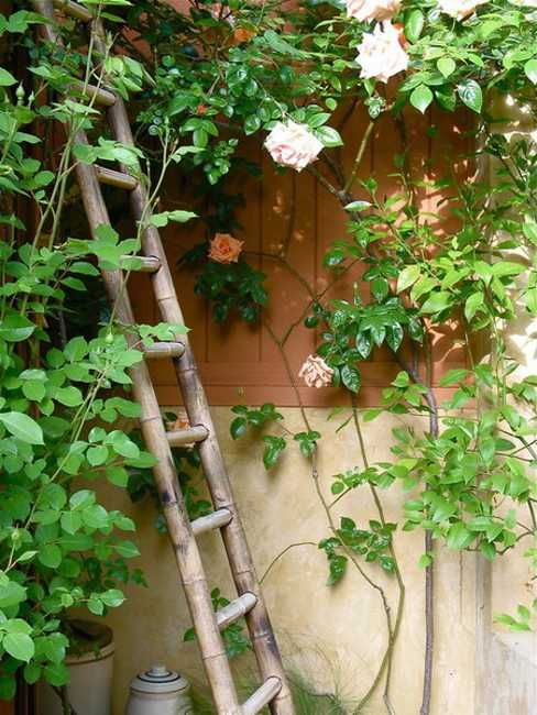 Mexican Style Garden Designs and Yard Landscaping Ideas | Yard ...