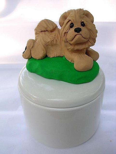 Chow Chow Cachorros Chow Chow Chow Chow Y Porcelana Fria