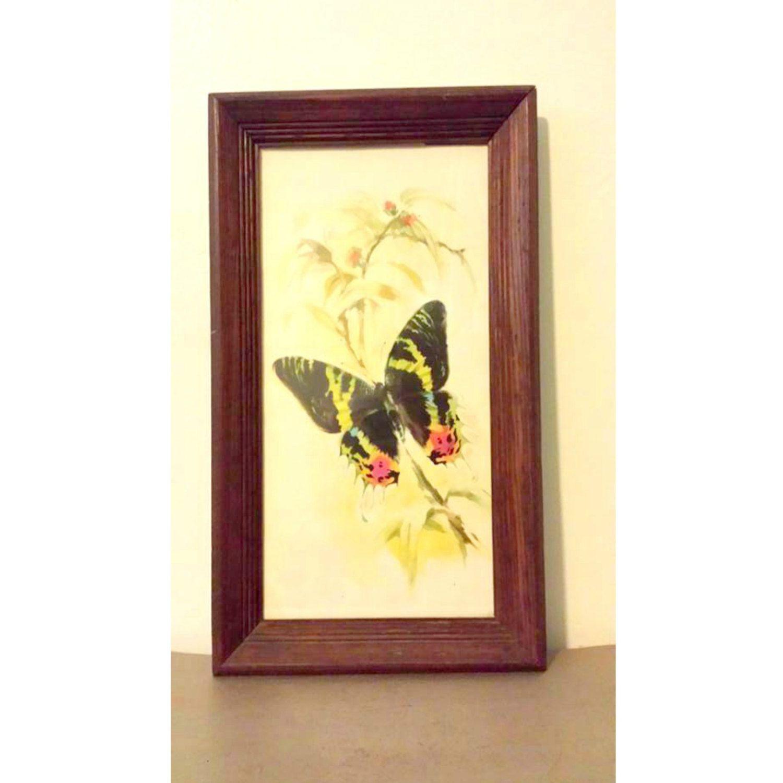 RESERVED for Lisa ** Do NOT Buy **Vintage Buttefly Framed Print ...