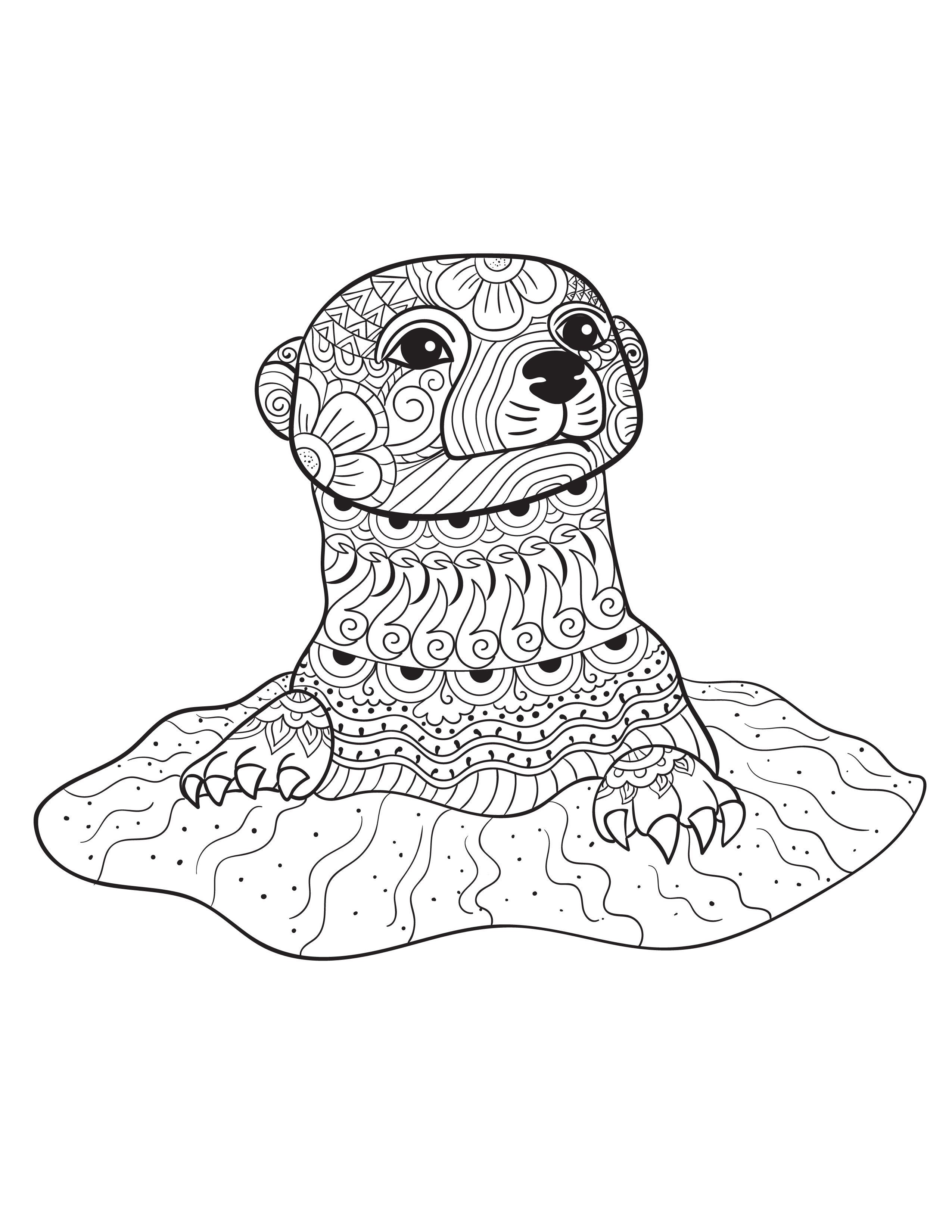 An Otter From Animals An Adult Coloring Book Which Is Part Of A
