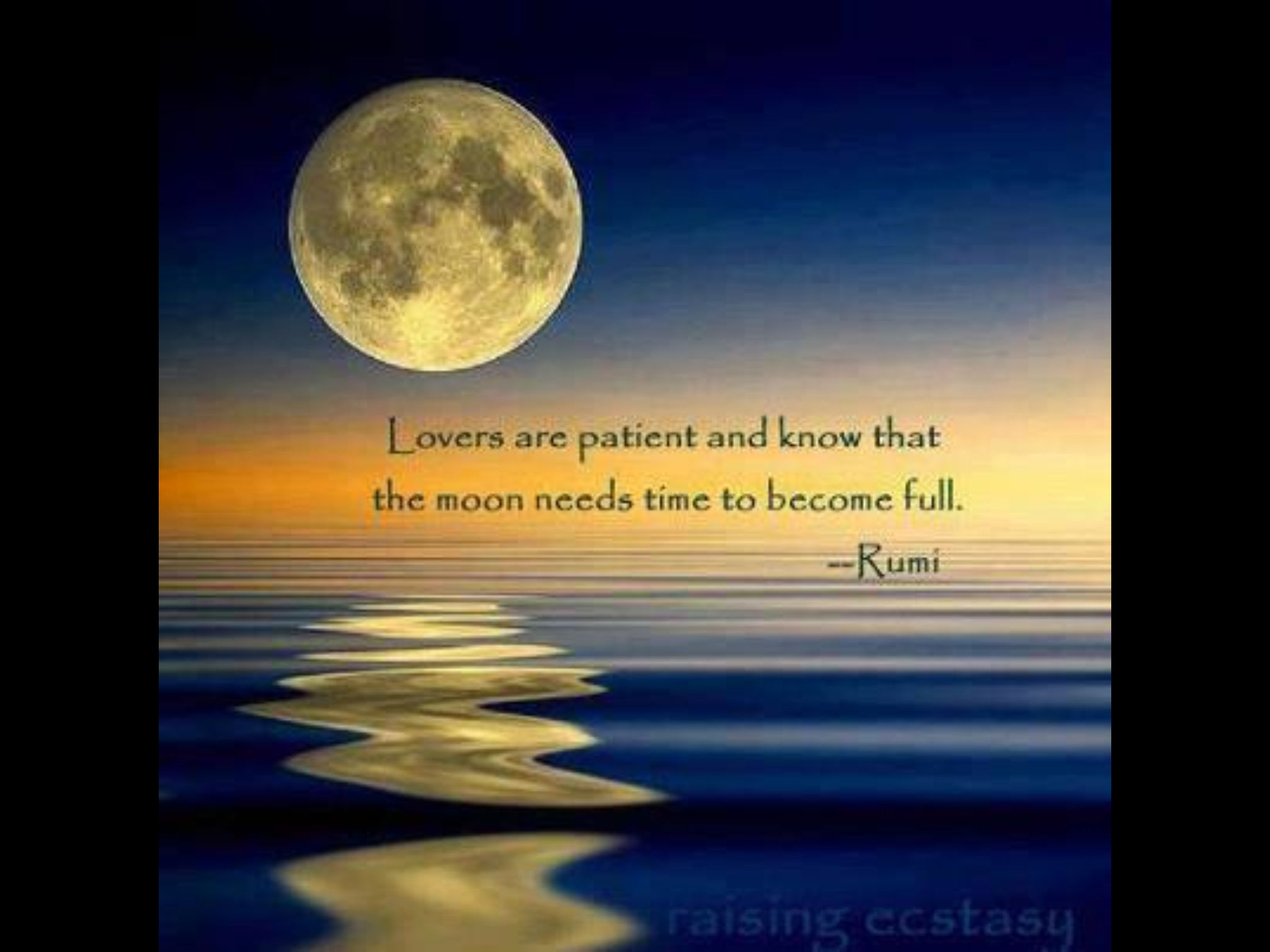Rumi Poetic Love Rumi Rumi Love Proverbs 27 Rumi Quotes