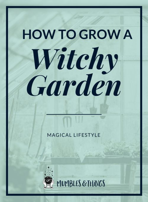 How to Grow a Witch's Garden — Mumbles & Things #greenwitchcraft