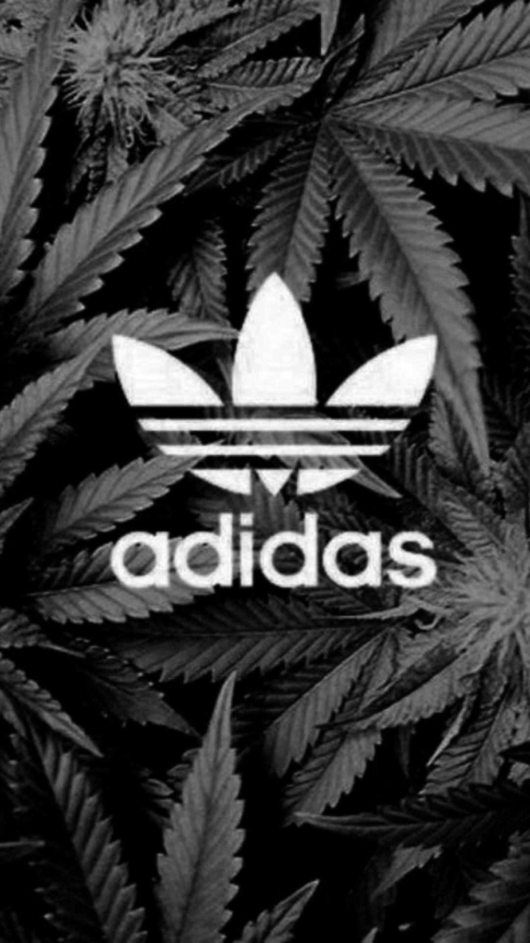 Tumblr iphone 6 wallpaper black and white - Iphone Wallpapers Iphone 6 Adidas Wallpaper 2