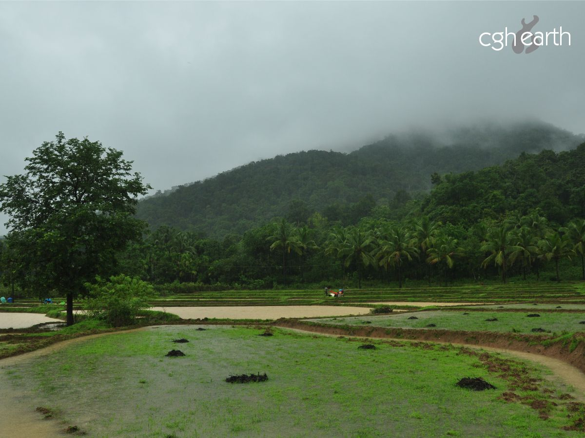 Experience nature at #CGHEarth's #VanaVasa that's tucked peacefully into a village in a forest. Cut out the noise and retreat into the #wilderness, and yourself. #Gokarna #EcoTourism