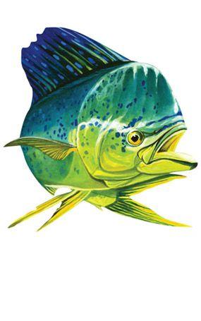 Mahi Sticker Deep Sea Fishing Sea Fishing Salt Water Fishing