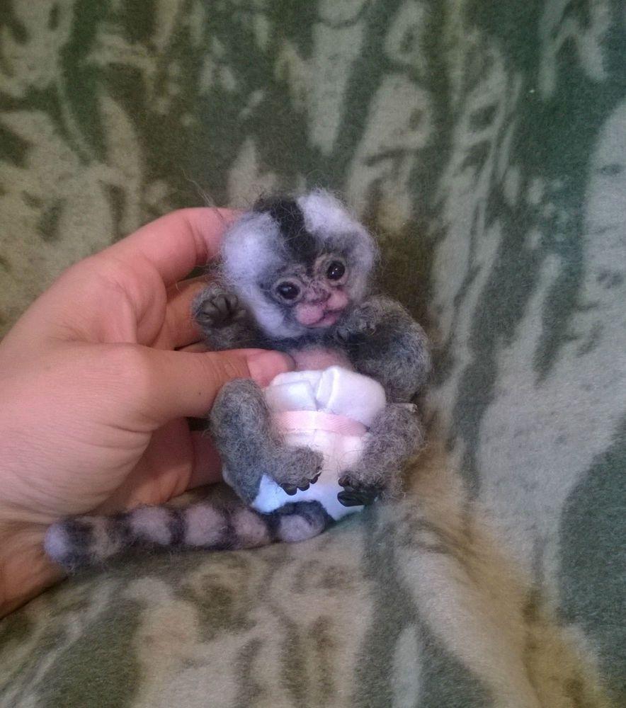 ooak artist bear wool needle felted baby marmoset monkey so realistic!!!