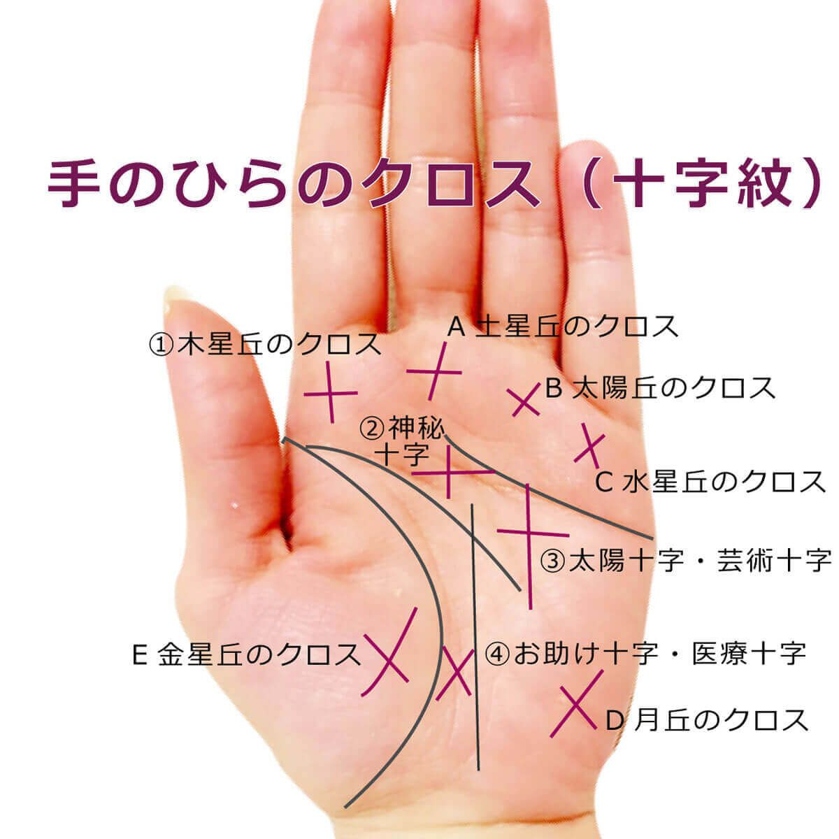 Photo of 【手相紋占い3】手のひらにクロス・十字紋・十字線(バツ印×・プラス印+)がある手相の見方
