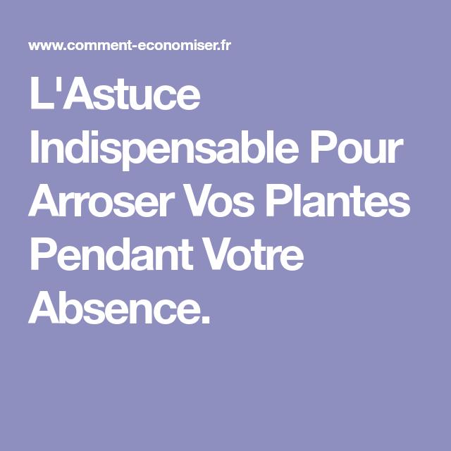 L Astuce Indispensable Pour Arroser Vos Plantes Pendant Votre