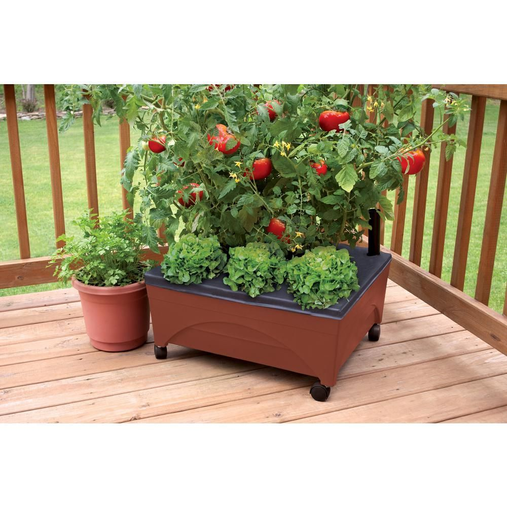 CITY PICKERS 245 in x 205 in Patio Raised Garden Bed Grow Box Kit with Watering System and Casters in Terra Cotta2340D  The Home Depotbed