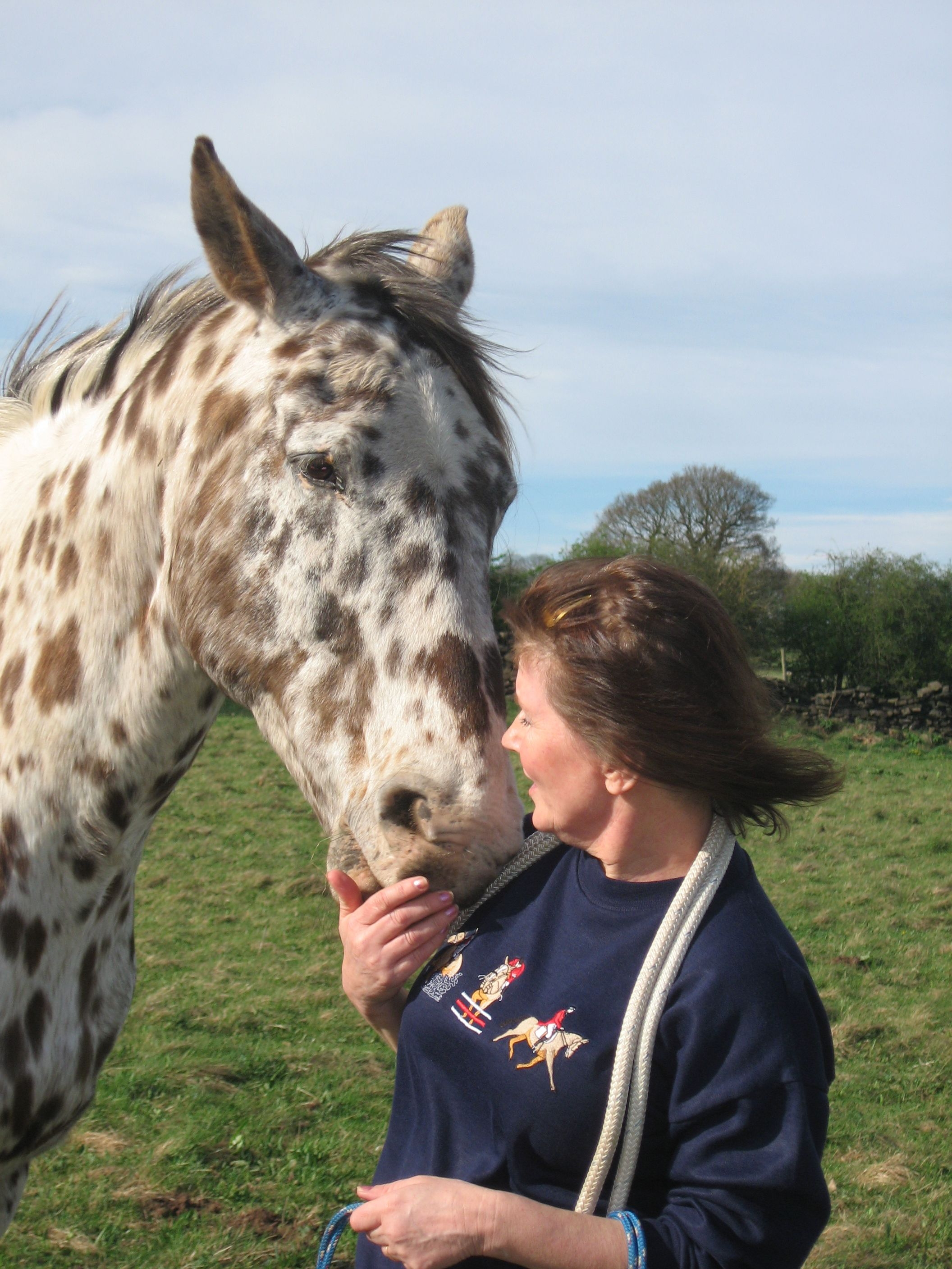 From Kes, Derbyshire | The Jacksons BIG Equestrian Picture Competition #horse #spotty #love #equestrian