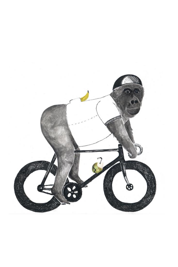 Veganer Gorilla auf dem Rennrad\