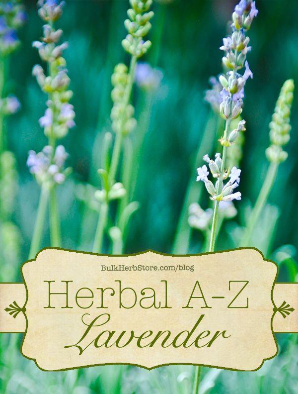 Herbal A Z Lavender Herbalism Bulk Herbs Healing Herbs