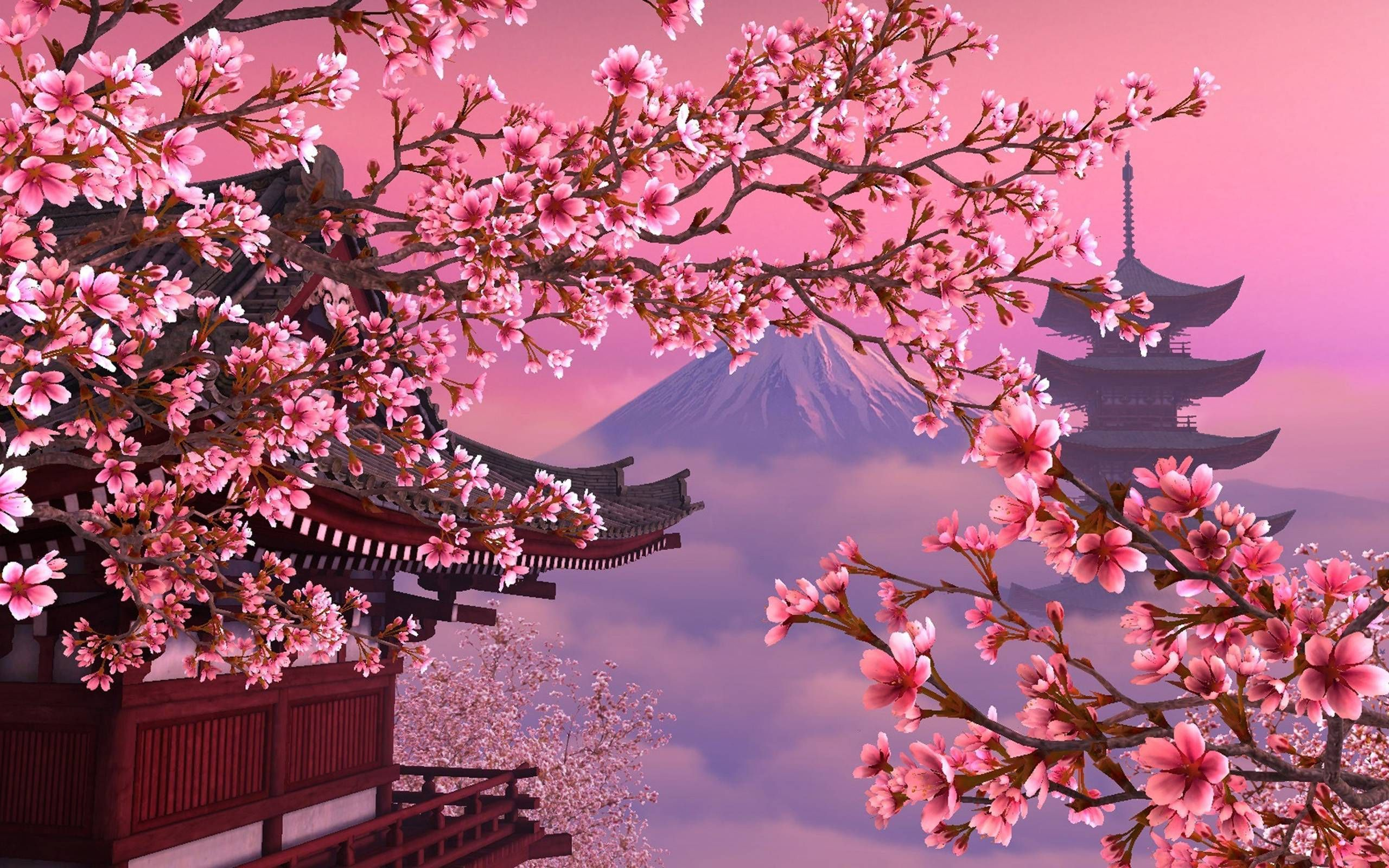2 Jpg 2560 1600 Cherry Blossom Wallpaper Scenery Wallpaper Aesthetic Desktop Wallpaper