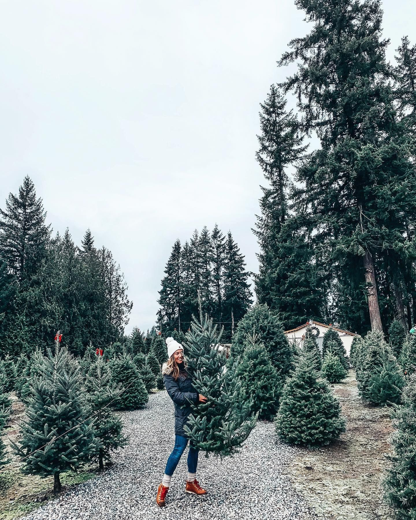 A Weekend In Tofino To Vogue Or Bust In 2020 Christmas Tree Farm Tree Farms Vancouver