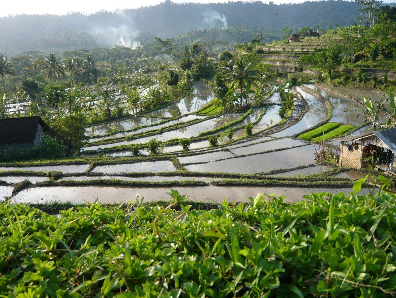 Sidemen Karangasem Bali - Balisolo