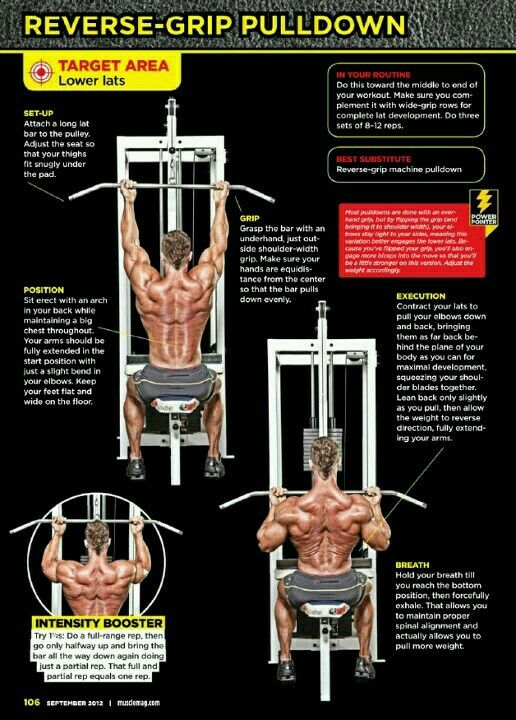Reverse Grip Pulldown Workout Chart Weight Training Workouts Exercise
