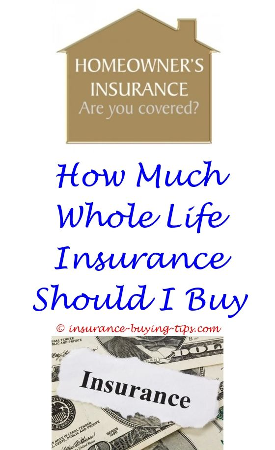 Direct Insurance Quote Impressive Discount Auto Insurance Quotes  Buy Car Insurance