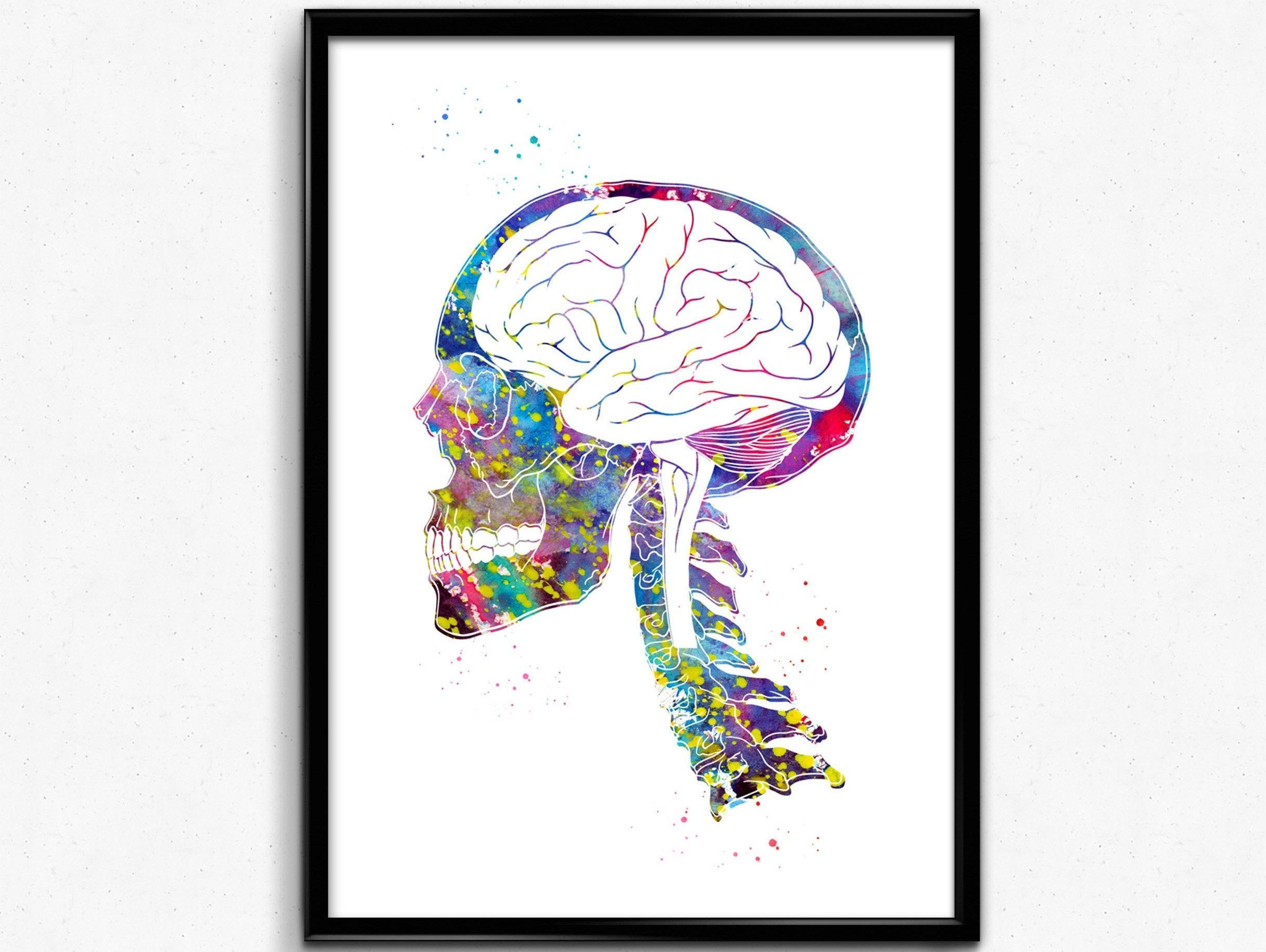 Skull and brain skull print braint print watercolor skull watercolor brain anatomy art Medical Office Decor medical art 1786 Office decorations have a high impact on empl...